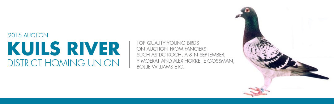 Kuils River District Homing Union 2015 young bird auction