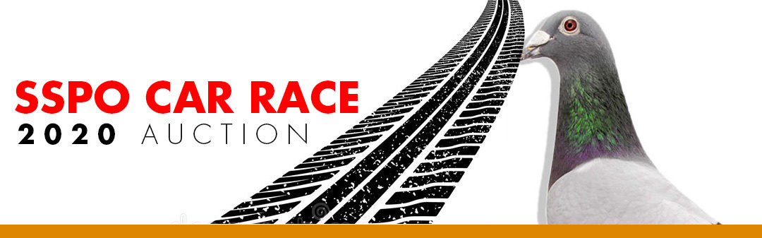 SSPO Car Race 2020